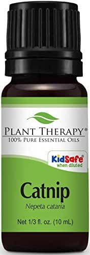 Plant Therapy Catnip Essential Oil. 100% Pure, Undiluted, Therapeutic Grade. 10 ml (1/3 oz).