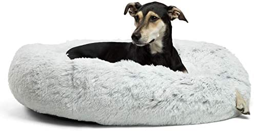 """Best Friends by means of Sheri The Original Calming Donut Cat and Dog Bed in Shag Fur, Large 36""""x36"""" in Frost, Removable Zipper Shell, Machine Washable (DNT-SHG-FRS-3636-VP)"""