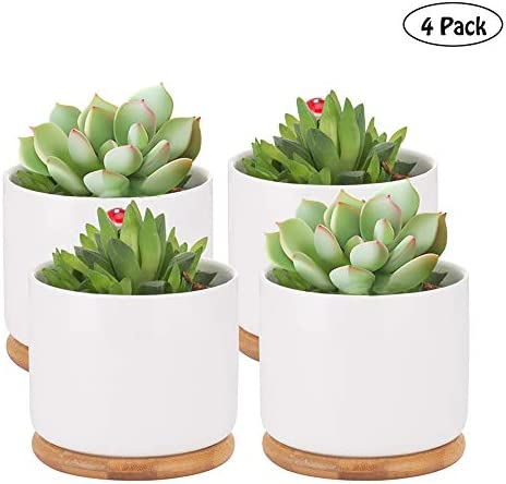 Succulent Pots, 4 Inch Succulent Planter Fits Larger Variety of Plants Ceramic Flower Planter Pot with Bamboo Tray, Pack of 4