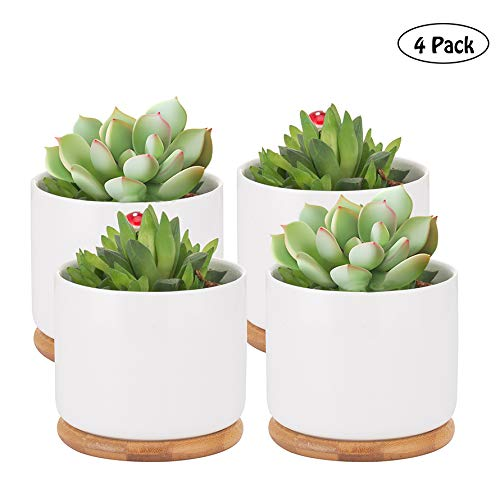Succulent Pots, 4 Inch Succulent Planter Fits Larger Variety of Plants | Ceramic Flower Planter Pot with Bamboo Tray, Pack of 4