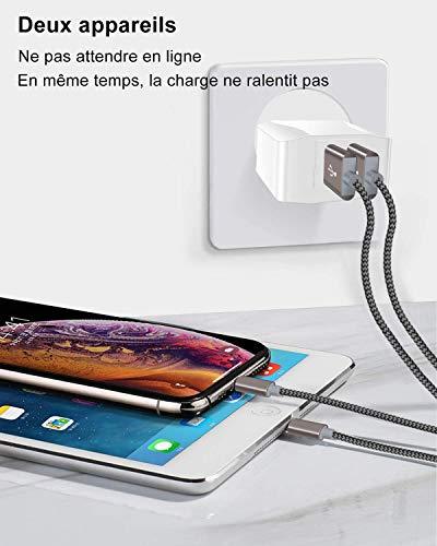 IceFrog Cargador Movil con Cable USB Tipo c [2Pack 2M], Cargador de Movil con 2 Puertos para Samsung S10/S9/S9 Plus/S8+/S8,Note 9/8,Huawei P30/P20/P10/P9/P9+,Xiaomi Mi A2/A1/8/9,Note 7/8/9/10 y más