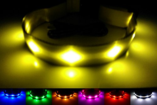 GoDoggie-GLOW USB Rechargeable LED Dog Safety Collar, Large ( 15 - 23.6 / 38 - 60 cm ), Yellow