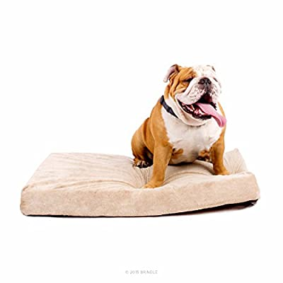 Brindle 4 Inch Solid Memory Foam Orthopedic Dog Bed - Removable Velour Cover with Waterproof Liner