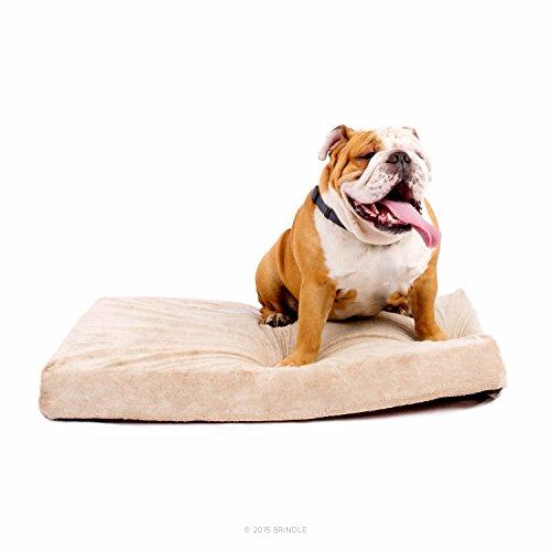 Best Large Dog Beds 9