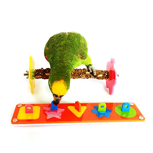 Parrot Training Toys - Rypet Bird Intelligence Training Toy Puzzle Building Blocks for Bird Parrot Cage Toy, Medium