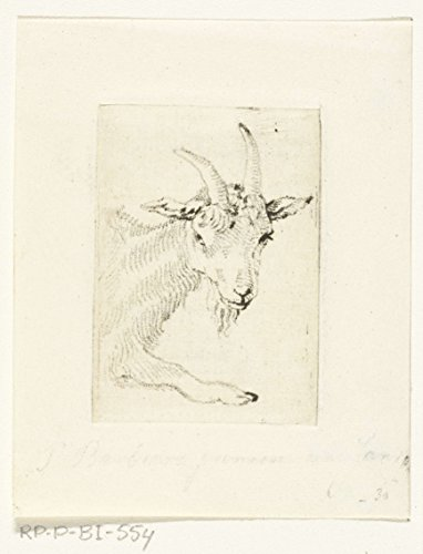 "Classic Art Poster - Head and leg of reclining buck, Pieter Barbiers (IV), 1808-1848 11"" x 14"""
