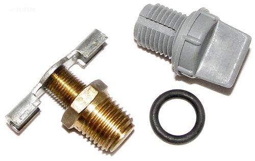 Raypak Drain Plug - 006721F