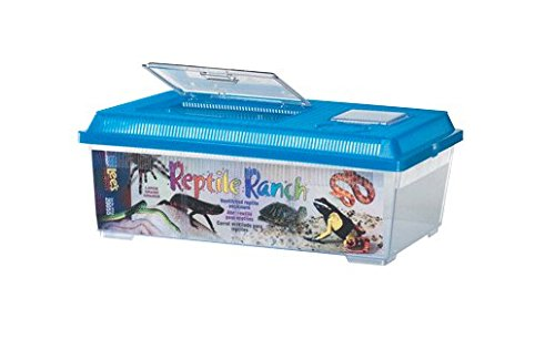 Lees Reptile Ranch (Lee's Reptile Ranch, Large, Rectangle with Lid, Colors may Vary)