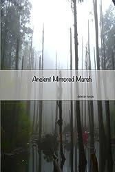 Ancient Mirrored Marsh