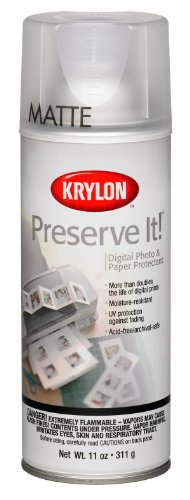 Krylon K07027000 Preserve It Aerosol Spray, 11 Ounce, Matte - Finish Gray Mist