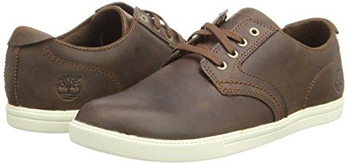 Timberland Newmarket FTB_Fulk LP Ox - zapatilla deportiva de cuero hombre marrón - marrón
