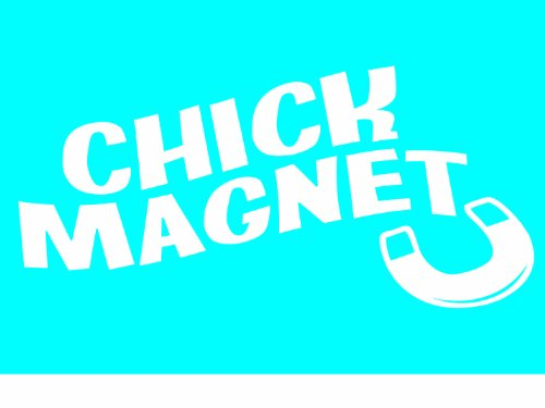 Imagine This Car Window Decal, U Chick Magnet (Best Chick Magnet Car)