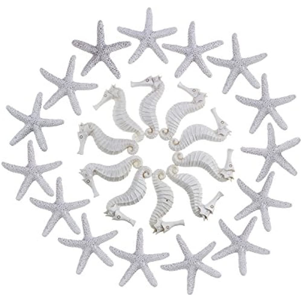 15 Pieces Beige Pencil Finger Starfish for Wedding Decor Home Decor and Craft Project