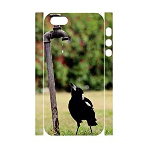 FLYBAI Magpie Bird Phone 3D Case For iPhone 5,5S [Pattern-6]