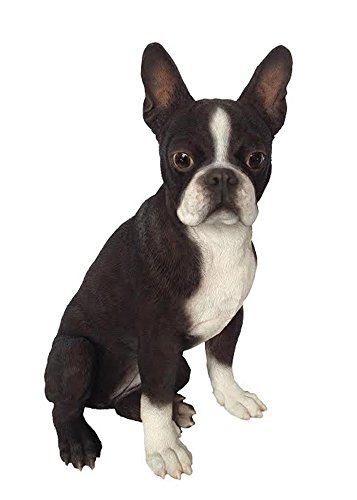 Hi-Line Gift Ltd Boston Terrier Dog - Monroe Statue