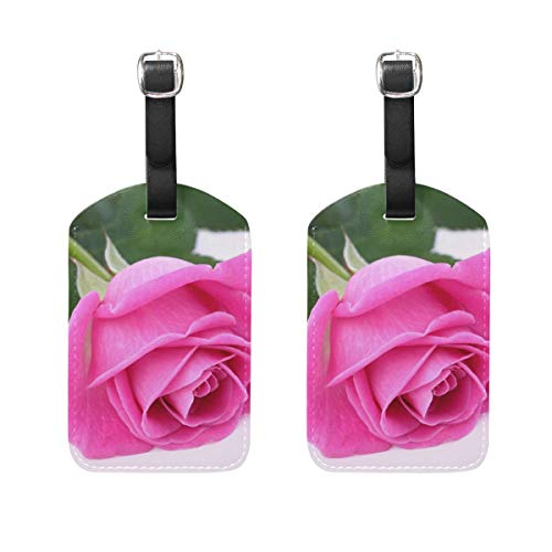 Luggage Tags Most Beautiful Pink Roses Mens Tag Holder Kids Bag Labels Traveling Accessories