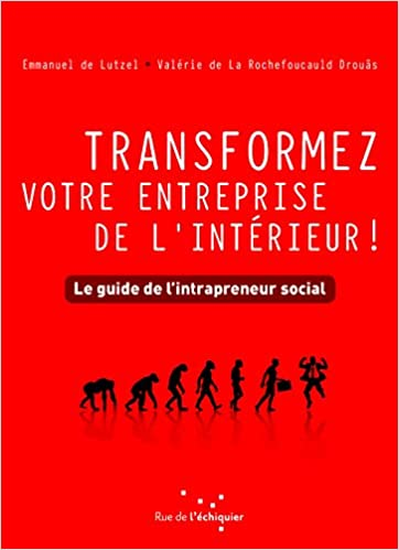 The Social Intrapreneur Guide – Innovation Excellence