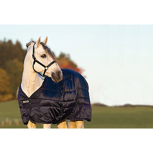 Horse Stable Blanket (Horseware Mio Stable Blanket 150g 81)