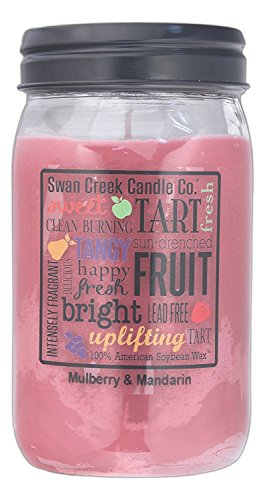 Swan Creek 100% American Soybean 24 Oz. Jar Candle - Mulberry & Mandarin ()