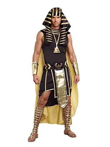 Roman Halloween Costumes Men (Dreamgirl Men's King of Egypt King Tut Costume, Black/Gold,)
