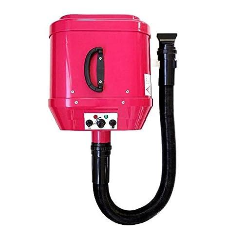 pedigroom montado en la pared doble motor perro aseo mascota Blaster secador secador de pelo: Amazon.es: Productos para mascotas