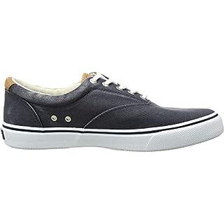 Sperry Mens Striper LL CVO Sneaker, Navy, 10.5