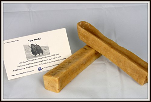 Himalayan Yak Snak Dog Chew - Large to Extra Large 2 Pack - Hard Cheese Snack Chews for Your Dog or Puppy Made from Yak Milk - All Natural - No Preservatives - Healthy - Limited Ingredients (Extra Large Rawhide Dog Bones)