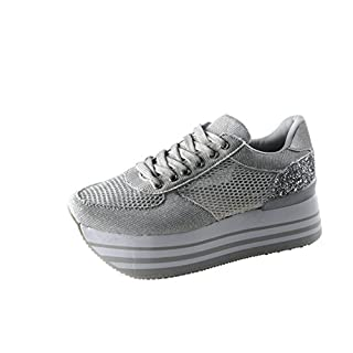 ROXY ROSE Women Comfortable Platform Sneakers Breathable Mesh Casual Walking Shoes (7 B(M) US, Silver)