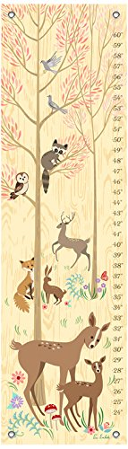 (Oopsy Daisy Playtime in The Woods 12x42 Growth Charts, by PIM Pimlada)