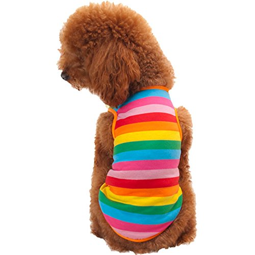 Clearance ! Pet Clothes, ღ Ninasill ღ Exclusive Rainbow Stripe Pet Shirt Dog Clothes Puppy Cat Apparel Costume Clothing Summer (L, Colorful) -