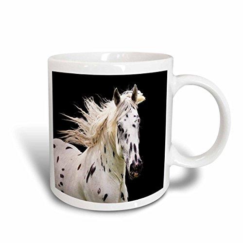 3dRose mug_80678_1 Beautiful Appaloosa Horse Ceramic Mug, 11-Ounce