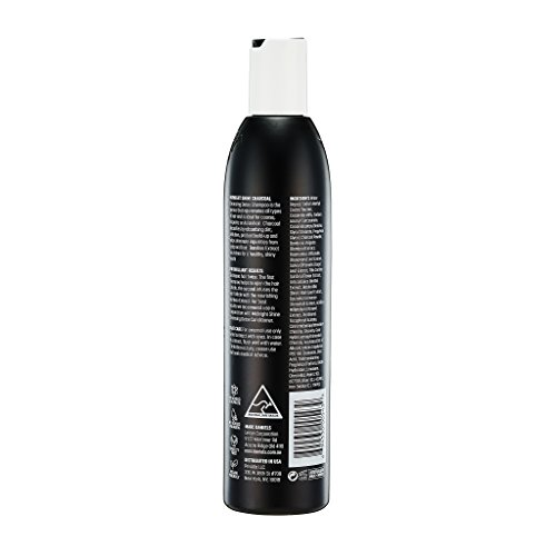 Charcoal Clarifying Shampoo - Sulfate Free – Vegan Friendly with Bamboo Extract Detoxifying for All Hair Types - Color Treated, Oily, Frizzy – for Women & Men by MARC DANIELS Professional by MARC DANIELS (Image #2)