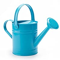 SHANGHAI WORTH 1.5 Letre Multi-Color Metal Watering Can,Kids Children Garden Watering Bucket with Anti-Rust Powder Coating Treatment and Beautiful Blue Pink Green Color