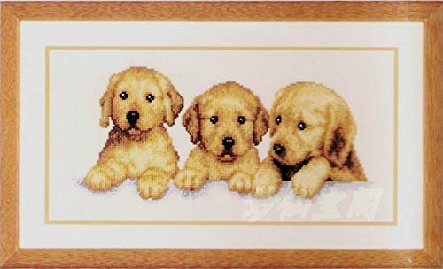 Zamtac 4023cm Needlework DIY Cross Stitch,Set for Embroidery kit,3 Yellow Labrador Retriever Dog Animal Pattern Cross-Stitch Painting