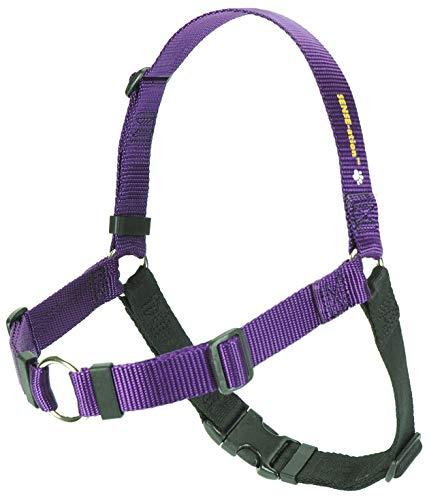 sensation no pull harness - 1