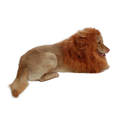 Lion Mane for Dog-Dog Costume DIBBATU Lion Wig for Large or Medium Dogs Halloween Christmas Gift Fancy Hair (Red brown) by DIBBATU
