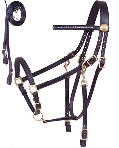 Derby Originals Rhinestone Browband Halter/Bridle Combo with Leather Reins, Havana, Full Size