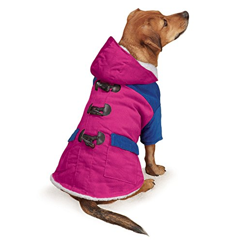 East Side Collection Heightened Brights Jacket for Dogs, 10