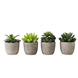Set of 4 Faux Assorted Succulent Plants in Recycled Pulp Molded Cylindrical Planter Pots 50