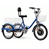 Electric Tricycle Color: Blue