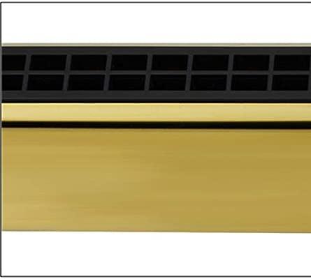Color : Gold-12 tune dorado Xionghaizi Arm/ónica Tremolo de 24 hoyos competencia juego profesional Juego de 7 y 12 tonos rendimiento ABCDEFGA # C # D # F # G # Caja de regalo plateado
