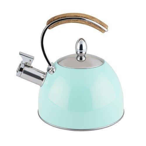 Stainless Steel Tea Kettle, Light Blue Stovetop Tea Kettle Whistling