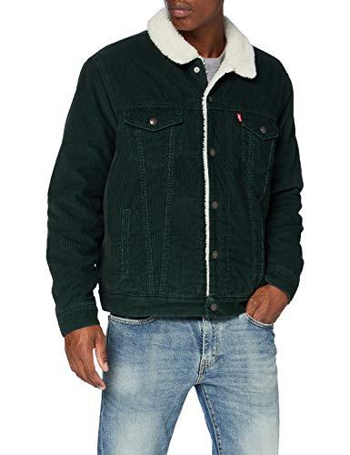 Levi's Men's Type 3 Sherpa Trucker Jacket, Green, XL
