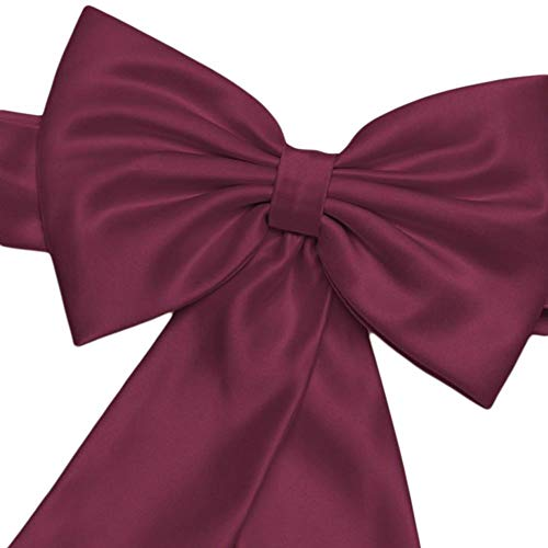 - David's Bridal Satin Flower Girl Sash with Back Bow Style S1041, Wine