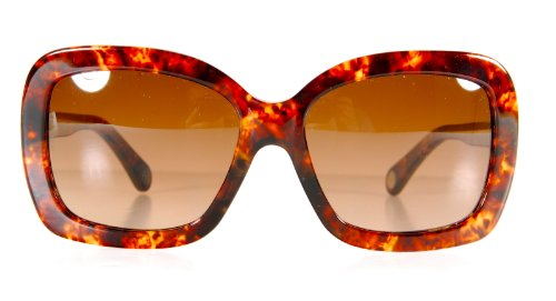 D&G Sunglasses Havana Brown - Eyewear Sunglasses D&g