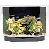 SeaClear 10 gal Flat Back Hexagon Mini Kit Acrylic Aquarium, 23 by 11 by 19.5'', Black