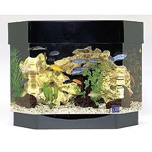 Seaclear 10 gal flat back hexagon mini kit for 30 gallon hexagon fish tank