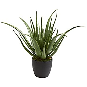 Nearly Natural 6353 Aloe Artificial Silk Plants Green 44
