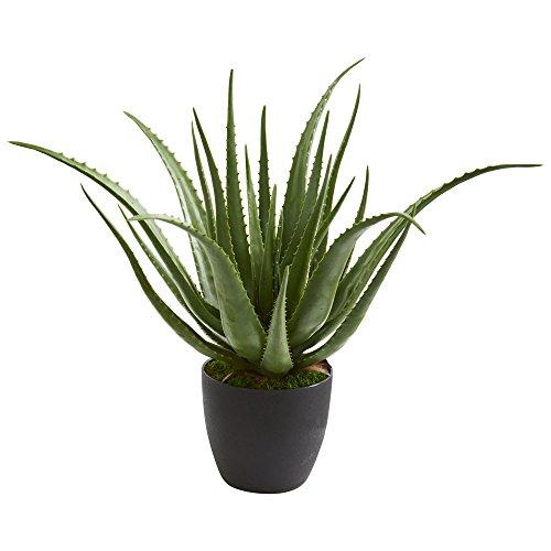Nearly Natural 6353 Aloe Artificial Silk Plants Green