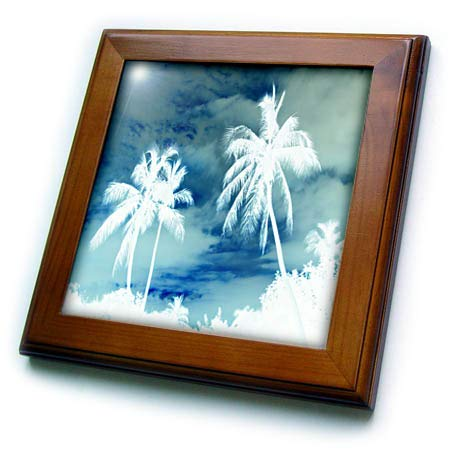 Sky Framed Tile - 3dRose Lens Art by Florene - Negative Landscapes - Image of Two White Palms On Bluish Sky - 8x8 Framed Tile (ft_300395_1)